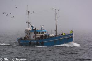 Photo of ARRESOE ship