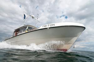 Photo of TRITON ship