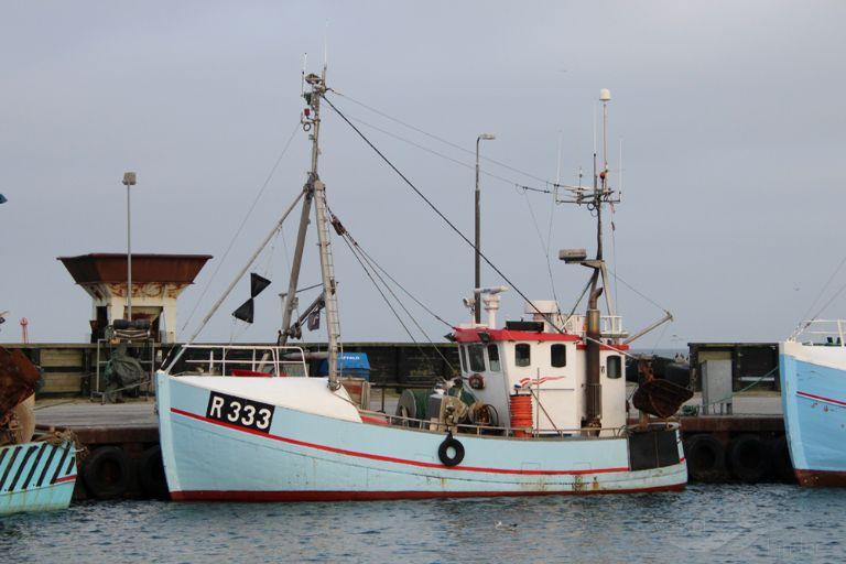 R333 LOPISI photo