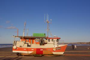 Photo of GRETE CECILIA ship