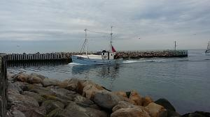 Photo of FN 126 ANNA P ship
