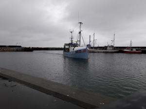 Photo of FN 484 SPIRHOLM ship