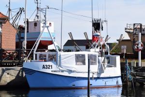 Photo of S 515 CATRINE ship
