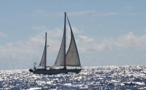 Photo of KARMA ship