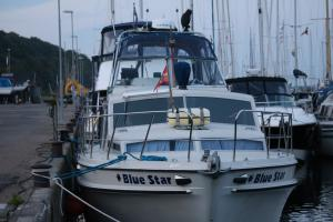 Photo of BLUE STAR ship
