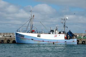 Photo of HM75 MORTEN MALENE ship
