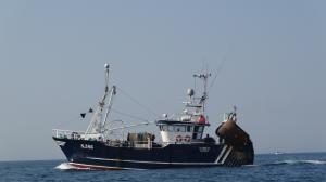 Photo of CASILO S386 ship