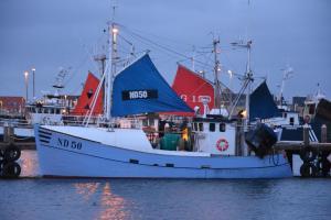 Photo of PERNILLE PATRICK ship