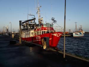 Photo of SCHETLA ship