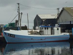 Photo of WICKI-ALEX ship