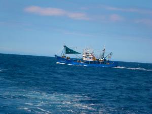 Photo of GUADALUPECO  AMA ship