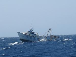 Photo of PUNTA DE'S VENT ship