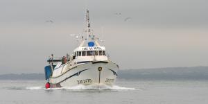 Photo of TERE LA MISTA ship