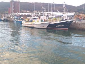 Photo of PLAYA DE BARES ship