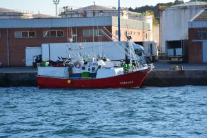 Photo of NUEVO HNOS SUAREZ ship