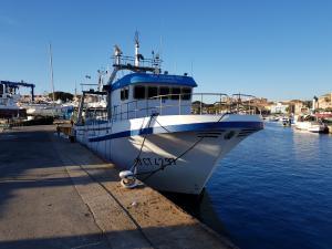 Photo of VELA GALLEGO DOS ship
