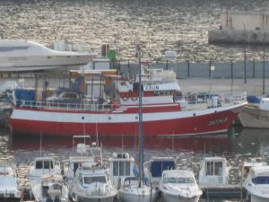 Photo of MARUFINA ship