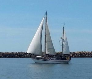 Photo of MUDARRA ship