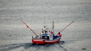 Photo of ARINO ship