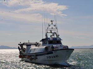 Photo of NUEVO TOMAS Y CARMEN ship