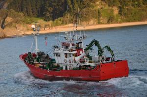Photo of KALAMUA BI ship