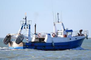 Photo of NEPTUNO DIOS MAR ship