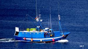 Photo of PLAYA DE TRABA ship