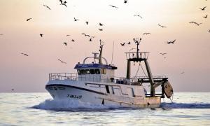 Photo of NUEVO MIGUEL ENCARNA ship
