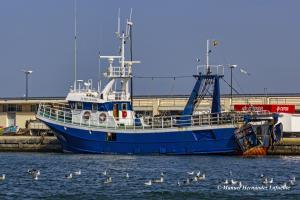 Photo of ESTELA NOVA ship