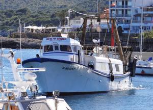 Photo of NUEVO PEP DOMINGO ship