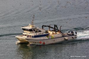 Photo of ANTONIO Y SARI ship