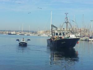 Photo of EL VILLA ship