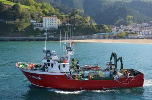 Photo of NUEVO TERRENO ship