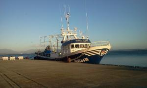 Photo of PUNTA ALJIBE ship