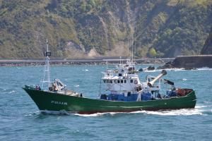 Photo of F/V SAN PRUDENTZIO B ship