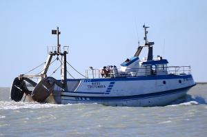 Photo of SERGIO Y JESICA ship