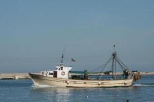 Photo of L'ANDRONA ship