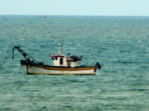 Photo of NUEVO BAHIA BLANCA ship