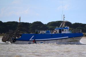 Photo of PAPELERO ship