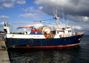 Photo of PICO SACRO ship
