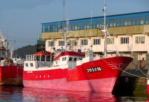 Photo of NUEVO ZUMAYA ship