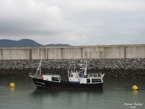 Photo of NUEVO CHISU ship