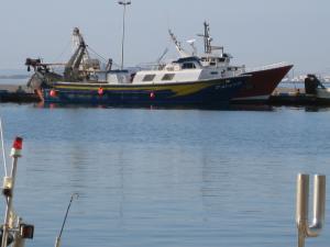 Photo of GALANDU ship