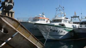 Photo of VERDU VERDU ship