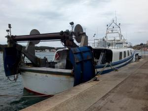 Photo of CIUTAT DE MAO ship