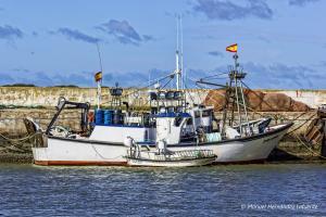 Photo of EL COMIA ship