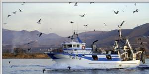 Photo of NUEVO MANOLO PUYOL ship