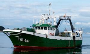 Photo of NUEVO MARINA ship