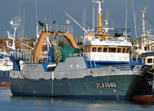 Photo of NUEVO SOCIO ship