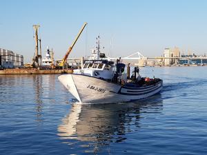 Photo of NUEVO LABIO ship